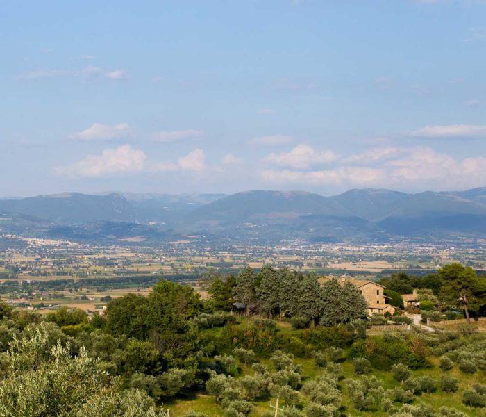 Foto Panoramiche IMG (5)